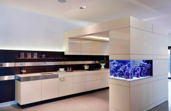 廚房適宜放魚缸